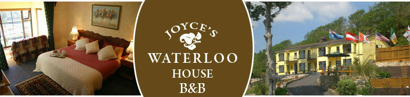 Joyce's Waterloo House